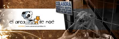 El Arca de Noé de Córdoba